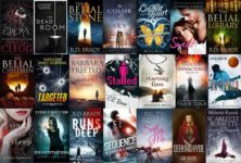 Sample Fiction Book Cover Designs