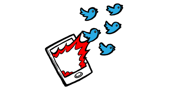 how-to-build-a-Twitter-following-FB